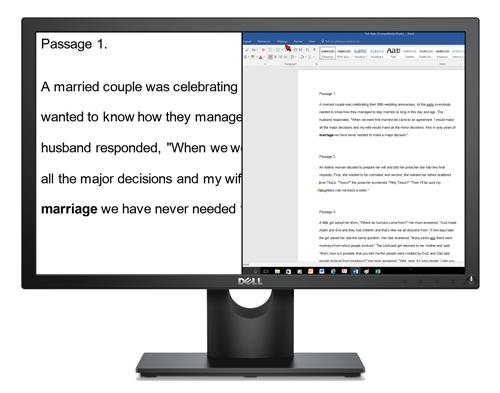 A desktop screen showing the split screen feature Dolphin SuperNova allows